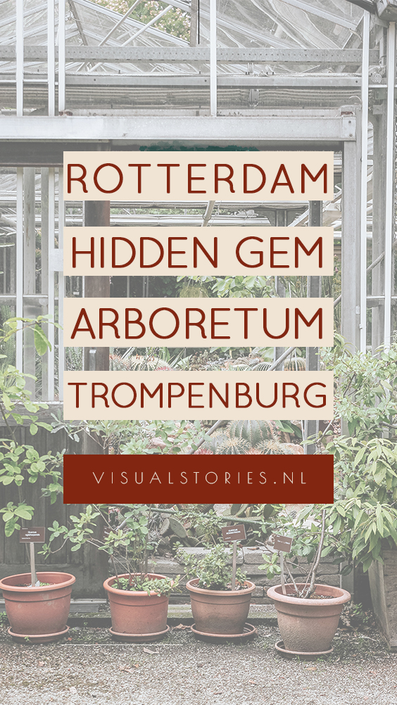 HIDDEN GEM IN ROTTERDAM, TROMPENBURG ARBORETUM
