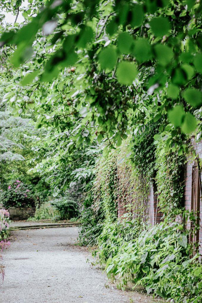 Trompenburg Tuinen & Arboretum, Rotterdam's hidden gem